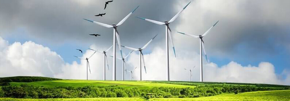 Windpark auf einer Wiese im ländlichen Raum