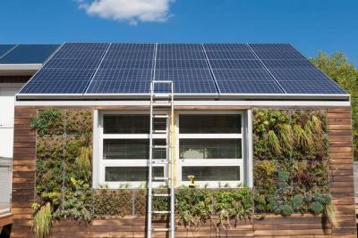 Passivhaus mit Solarzellen und mit Pflanzen beachsen