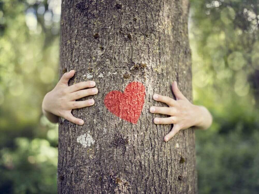 Herz auf Baum mit Umarmung