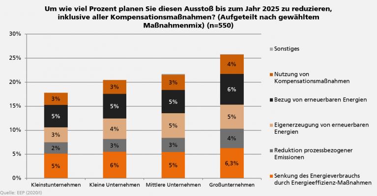 Maßnahmenmix aus dem Energieeffizienzindex (EEI) bis 2025 in deutschen Unternehmen