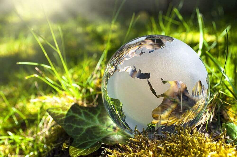 Weltkugel in grüner Wiese